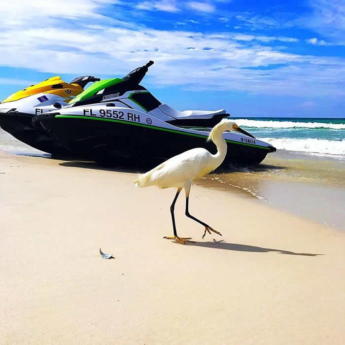 jet skis and stork on Panama City Beach